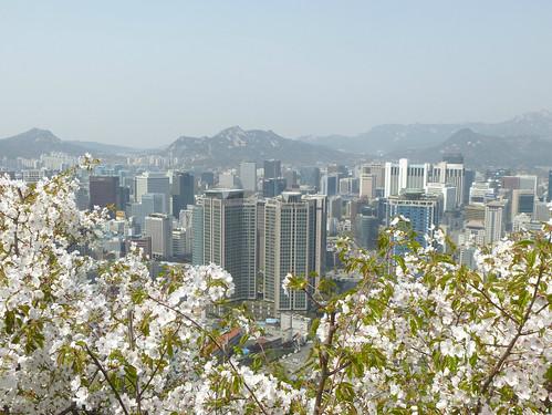 C16-Seoul-Mont Namsan-Descente-j7 (7)