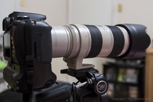 Canon EF 70-200mm f/2.8L IS II USM with a Canon 2x EF Extender III (Teleconverter) mounted on a Canon Rebel T4i / 650D body | by Vaughan Weather