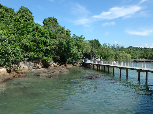 Chek Jawa boardwalk