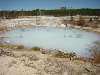 55 Norris Back basin