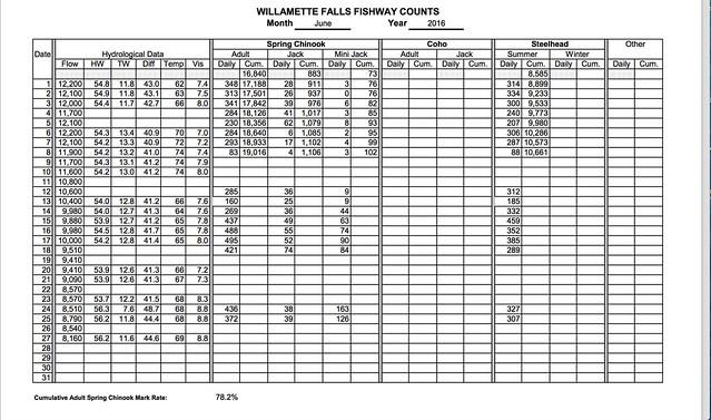 willamette falls fish counts