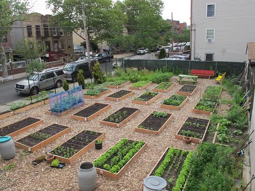 400 Montauk Avenue Community Garden