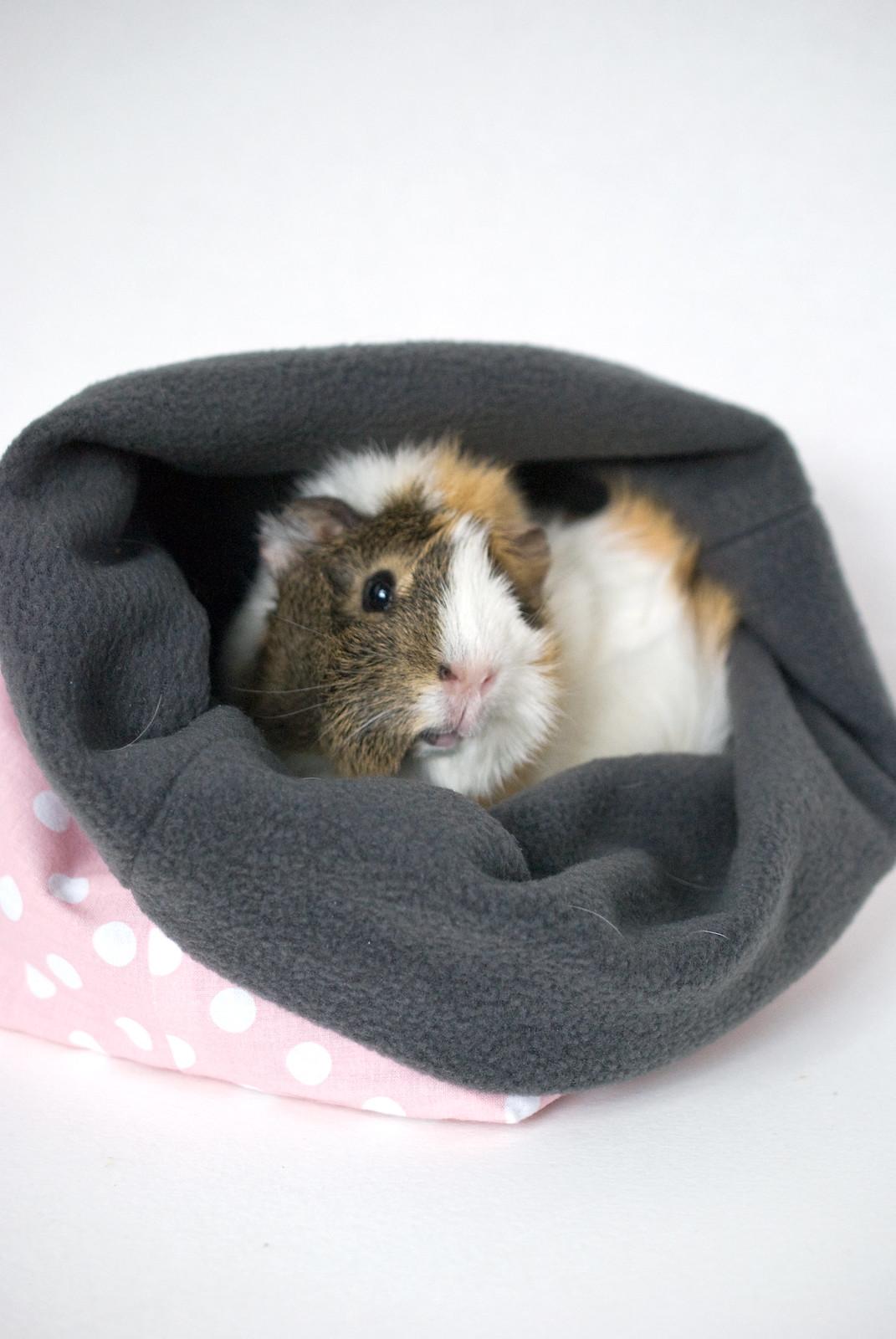 Piggy Pouch