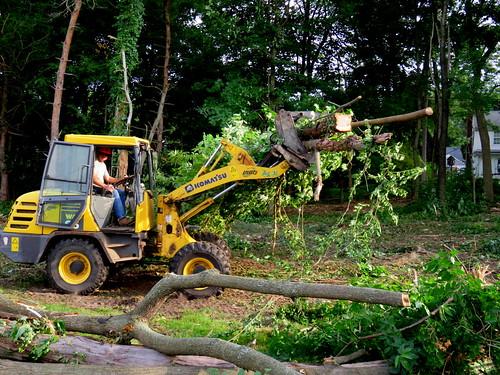 man destroying Nature