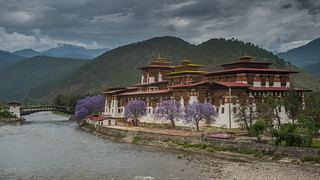 Punakha Dzong (eXplored!) | by Nagesh Kamath