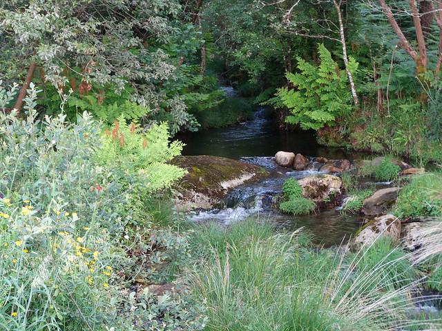 Río en la Ruta de A Gafa e Portosín