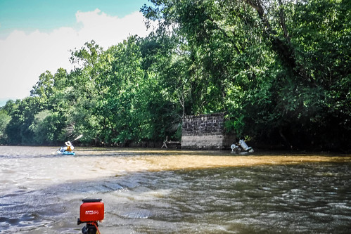 Goat Island in the Broad River-61