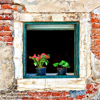 italy-venice-window-frame-1 | by Leo Wehrstedt