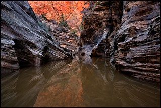 Slot Canyon, Zion National Park | by @GilAegerter / klahini.com