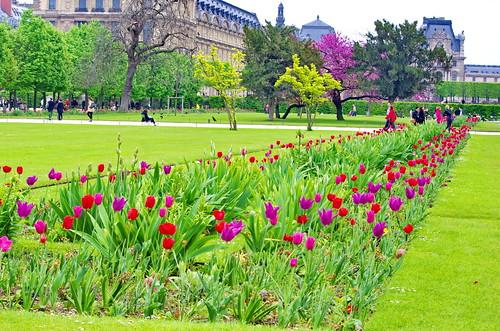 Paris le jardin des tuileries 21 pascal poggi flickr for Le jardin paris