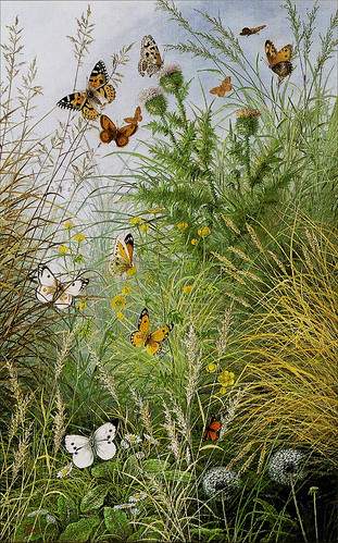 """The Butterflies` Haunt"" (Dandelion Clocks and Thistles) William Scott Myles. 19th century 