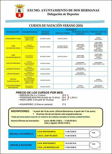 Calendario y precios de los cursos de natación