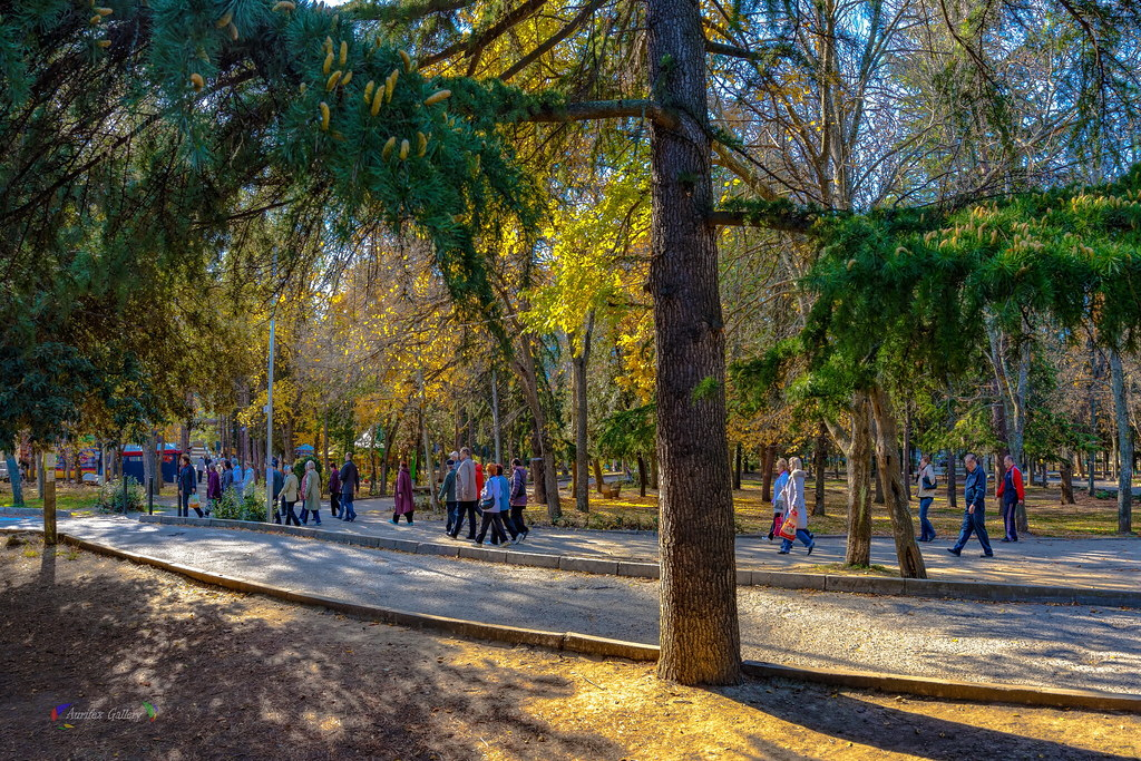 In the Park. November.