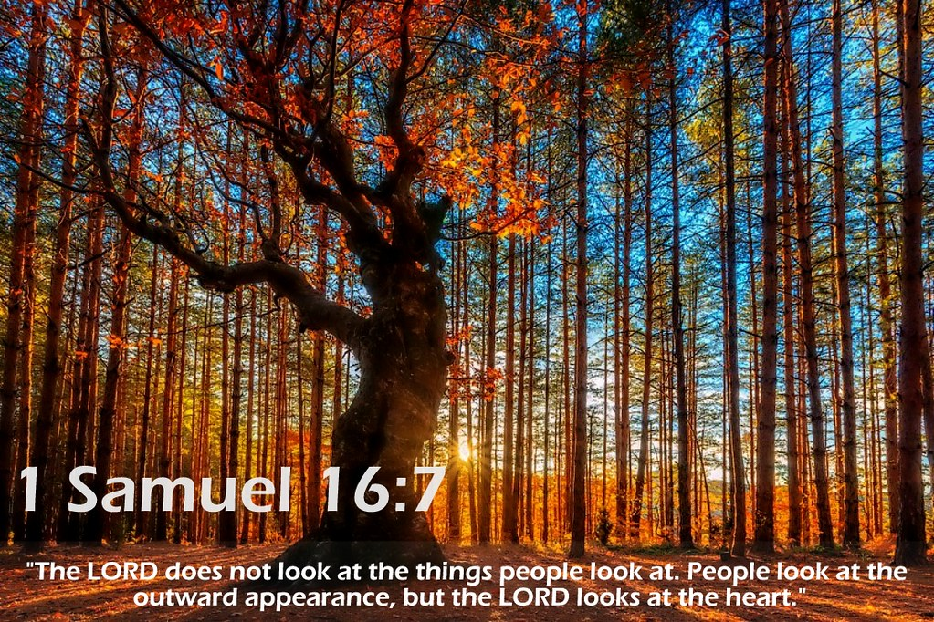 Image result for 1 samuel 16