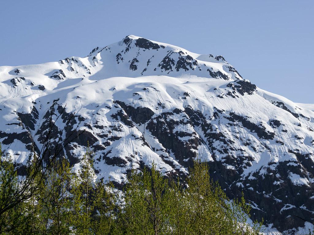 Exit Glacier-9