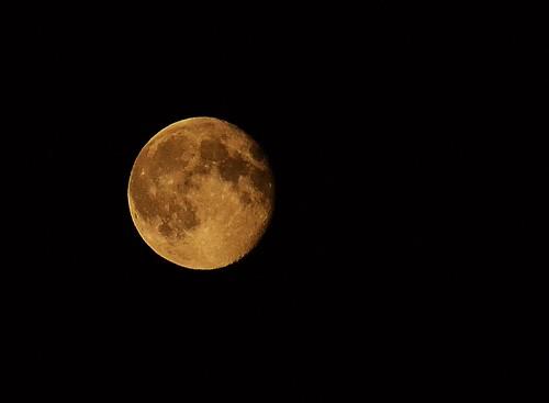 Orange Moon #1