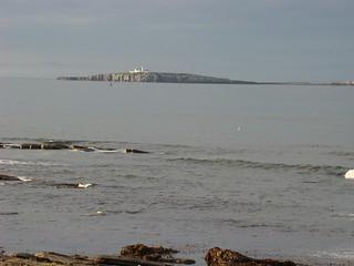 102 Farne Islands vanaf seahouses
