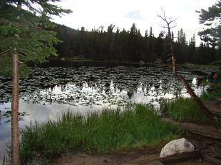 31 Nymph Lake