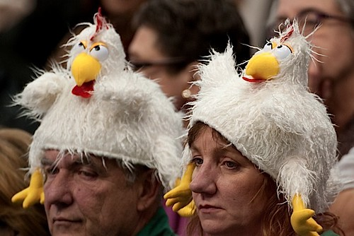 "Fans in the stands ""Happy Cluckers"" 
