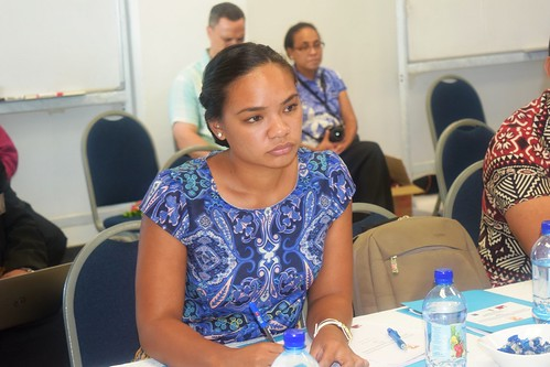 PPCR Monitoring & Evaluation workshop Tonga (21) | by CIFaction