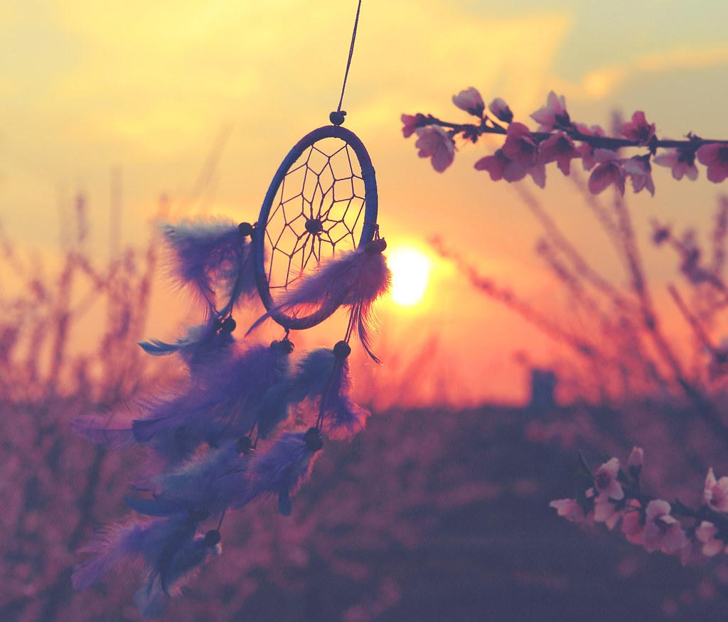 Dream Catcher In The Sun DreamCatcher eirad Flickr 7