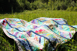 Field Study Scout Quilt | by CoraQuilts~Carla