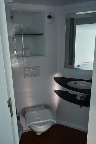 Vaste salle de bain dans la cabine pmr visite du ms cyra - Salle de bain pmr ...