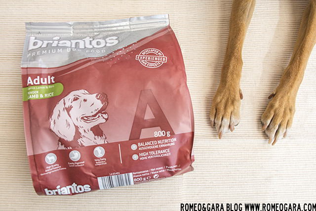 Zooplus, encuentro doglovers
