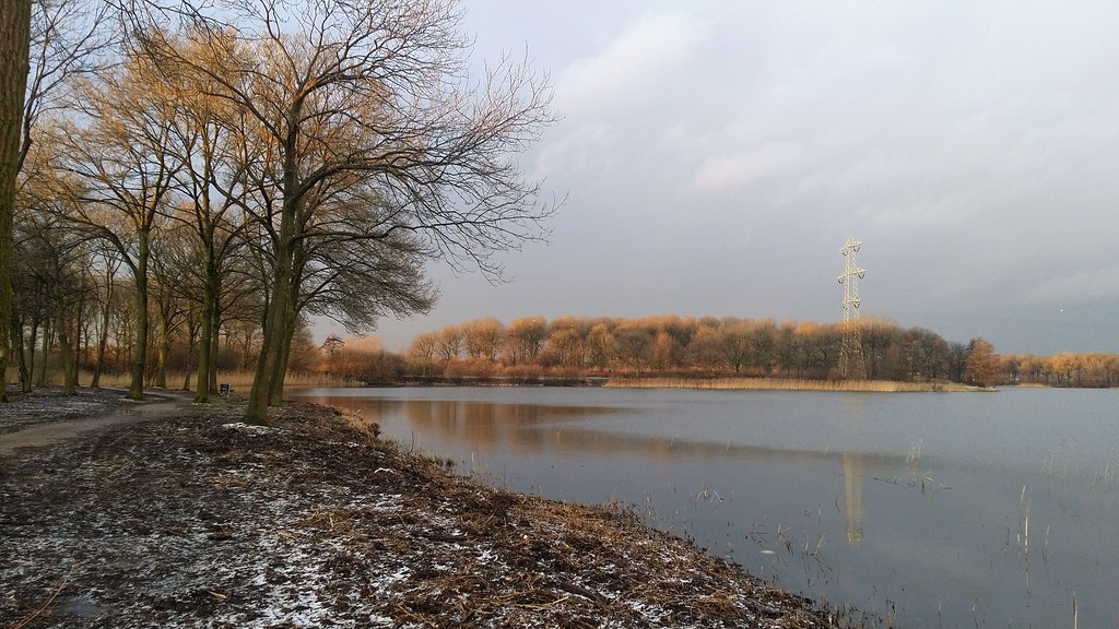 登博斯 冬季 Den Bosch Winter at Lake Rosmalen