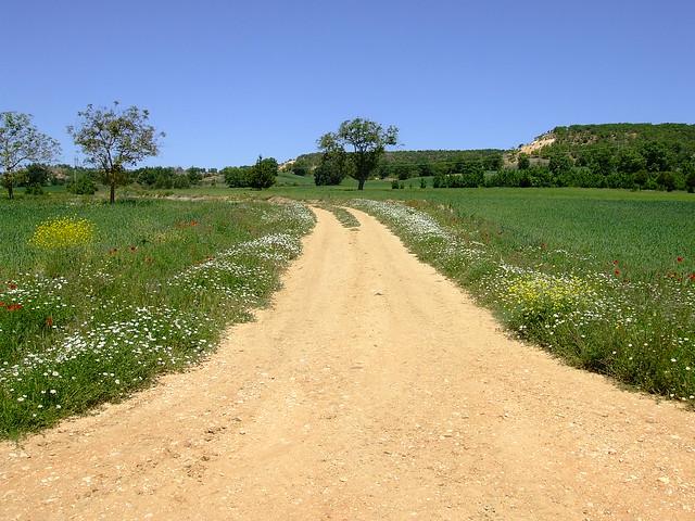 Caminos de Caleruega