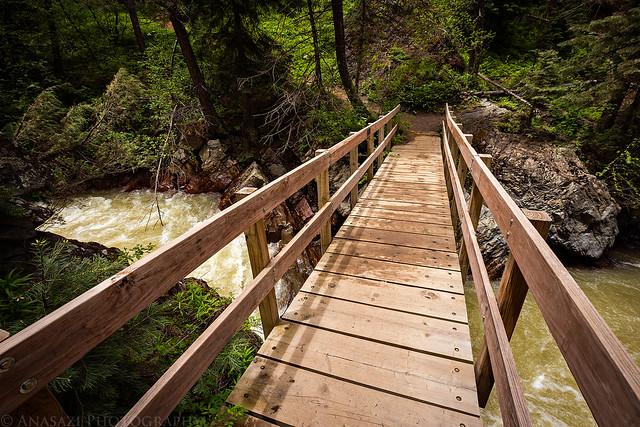 Uncompahgre River Bridge