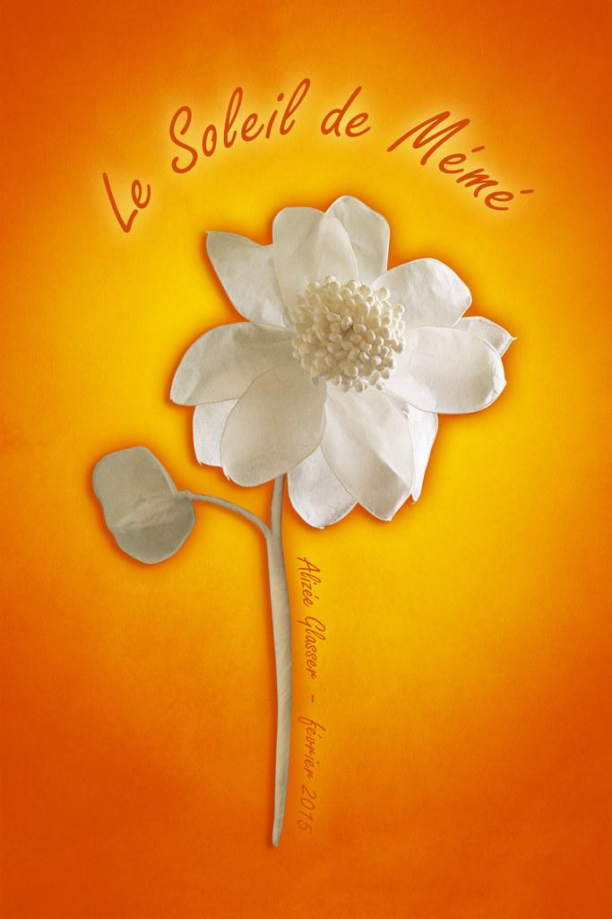 Le Soleil De Meme Le Tournesol Fleur Du Soleil Etait L Flickr