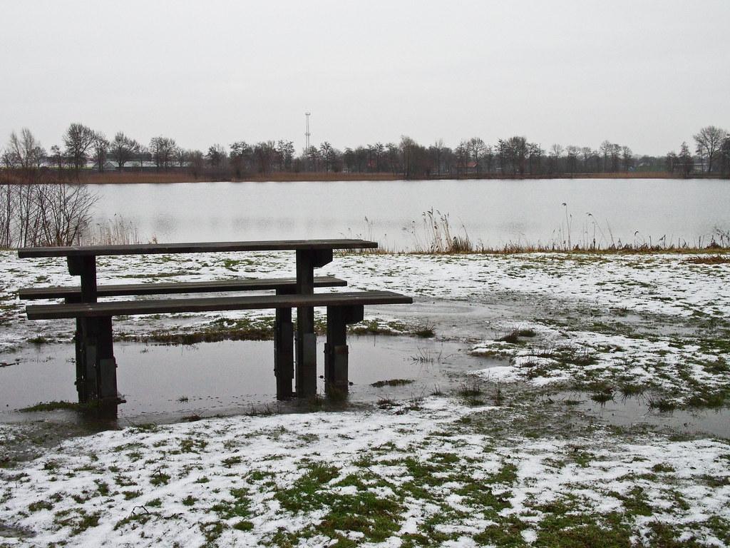 登博斯 冬季 Den Bosch Winter at Lake Rosmalen