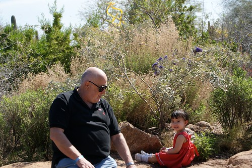 Arizona Desert Botanical Garden 045 David Levinson