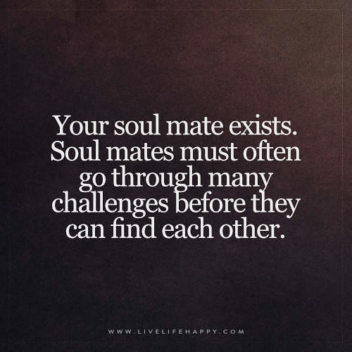 Soulmates Love Quotes About Life: Your Soul Mate Exists Quote