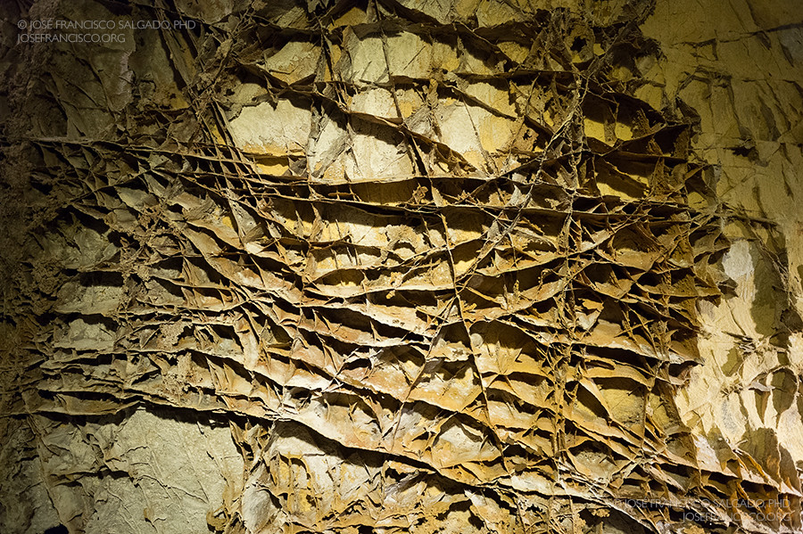 Wind Cave National Park Boxwork