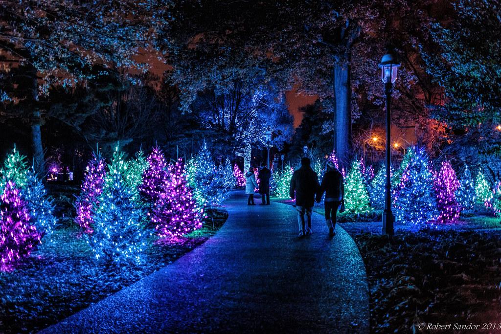 Great ... Garden Glow 2 | By Bob Sandor 2016
