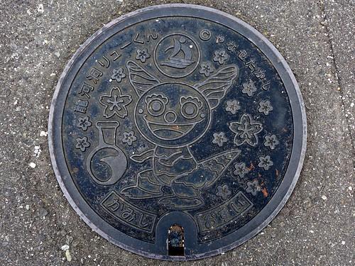 Kami Kochi, manhole cover 6 (高知県香美市のマンホール6)