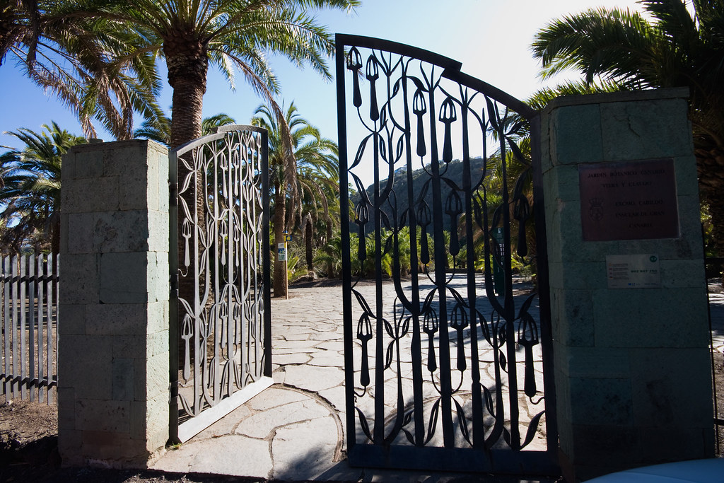 Jard n bot nico viera y clavijo jard n canaria las palmas de gran canaria flickr - Jardin botanico las palmas ...