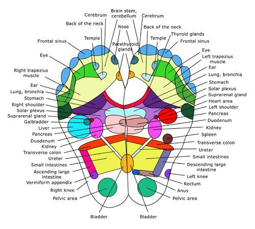 reflexology points | by Adam Mutum
