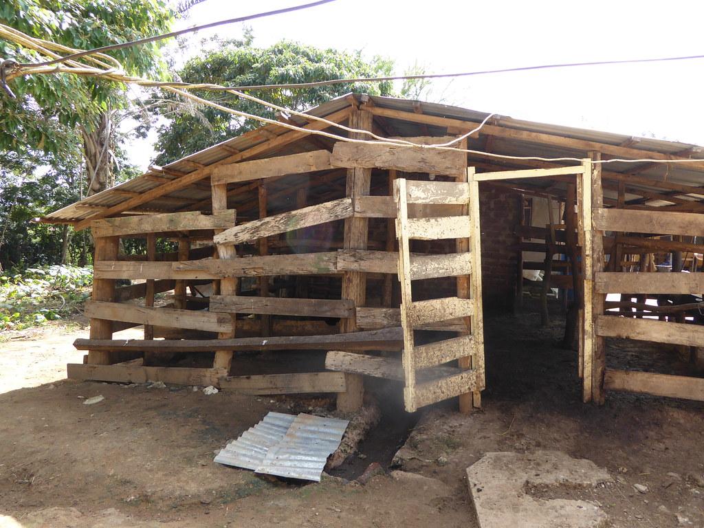 Zero grazing unit in handeni tanzania by international livestock research institute