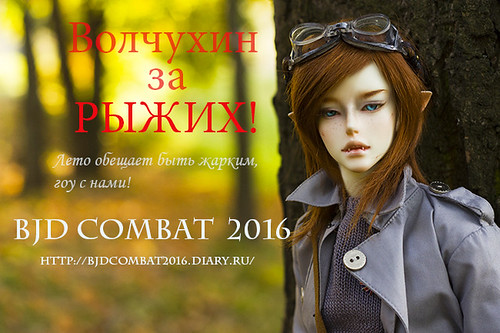 BJD COMBAT 2016