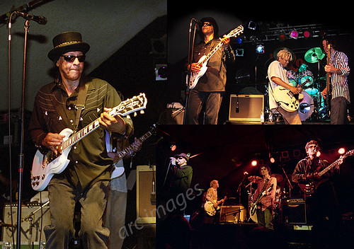 Love, with Arthur Lee, Robin2, Bilston, 2004 and 2005 | by Gig Junkies