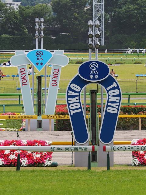 @Tokyo Racecourse 2