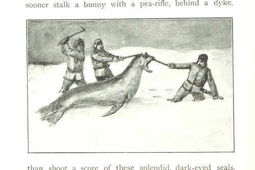 Image taken from page 252 of 'From Edinburgh to the Antarctic. An Artist's notes ... during the Dundee Antarctic Expedition of 1892-3. ... With a Chapter by W. S. Bruce, etc' | by The British Library