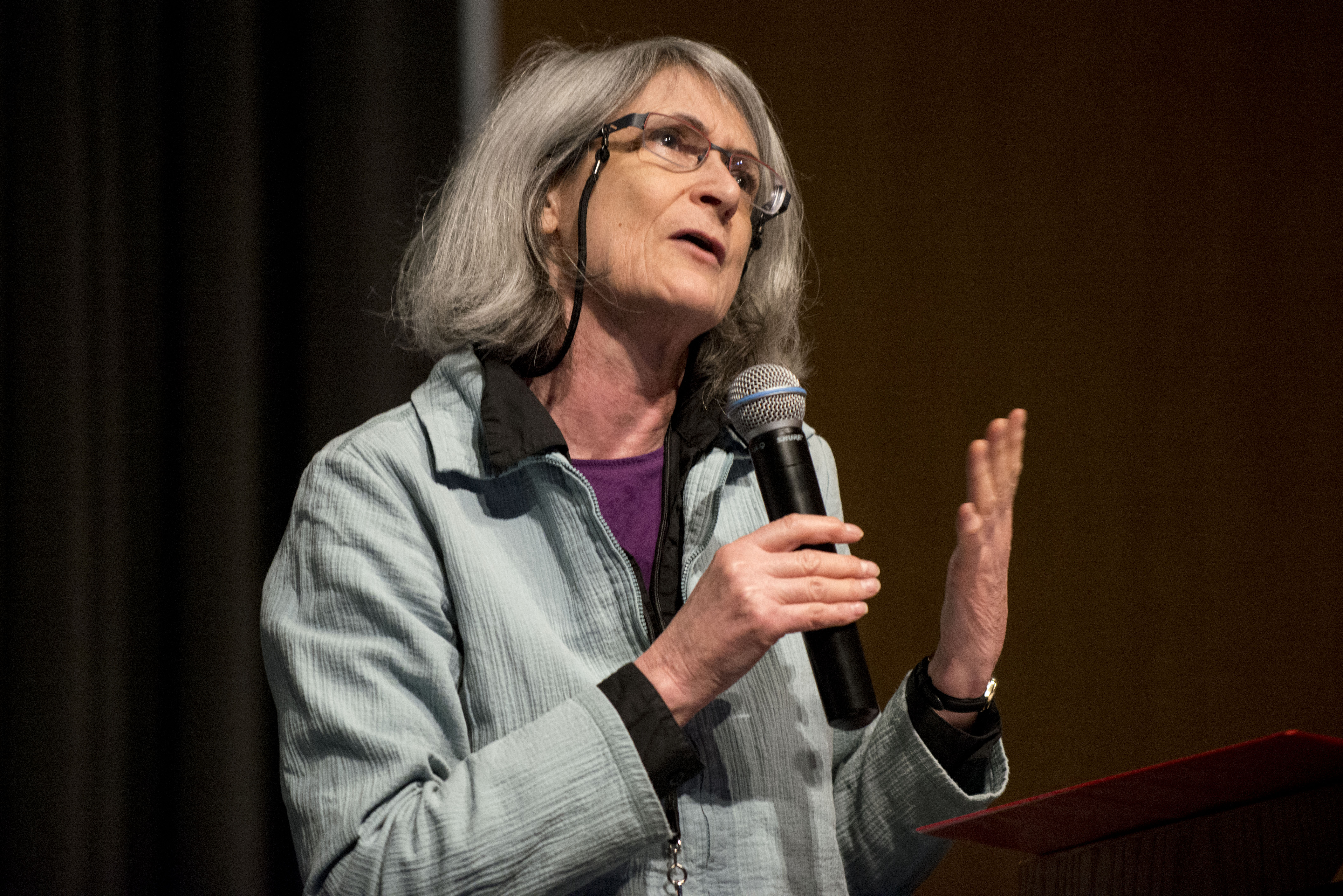 Jane Singer, professor at City University London, speaks at the 2014 ISOJ on the UT-Austin campus. (Lauren Schneider/Knight Center)