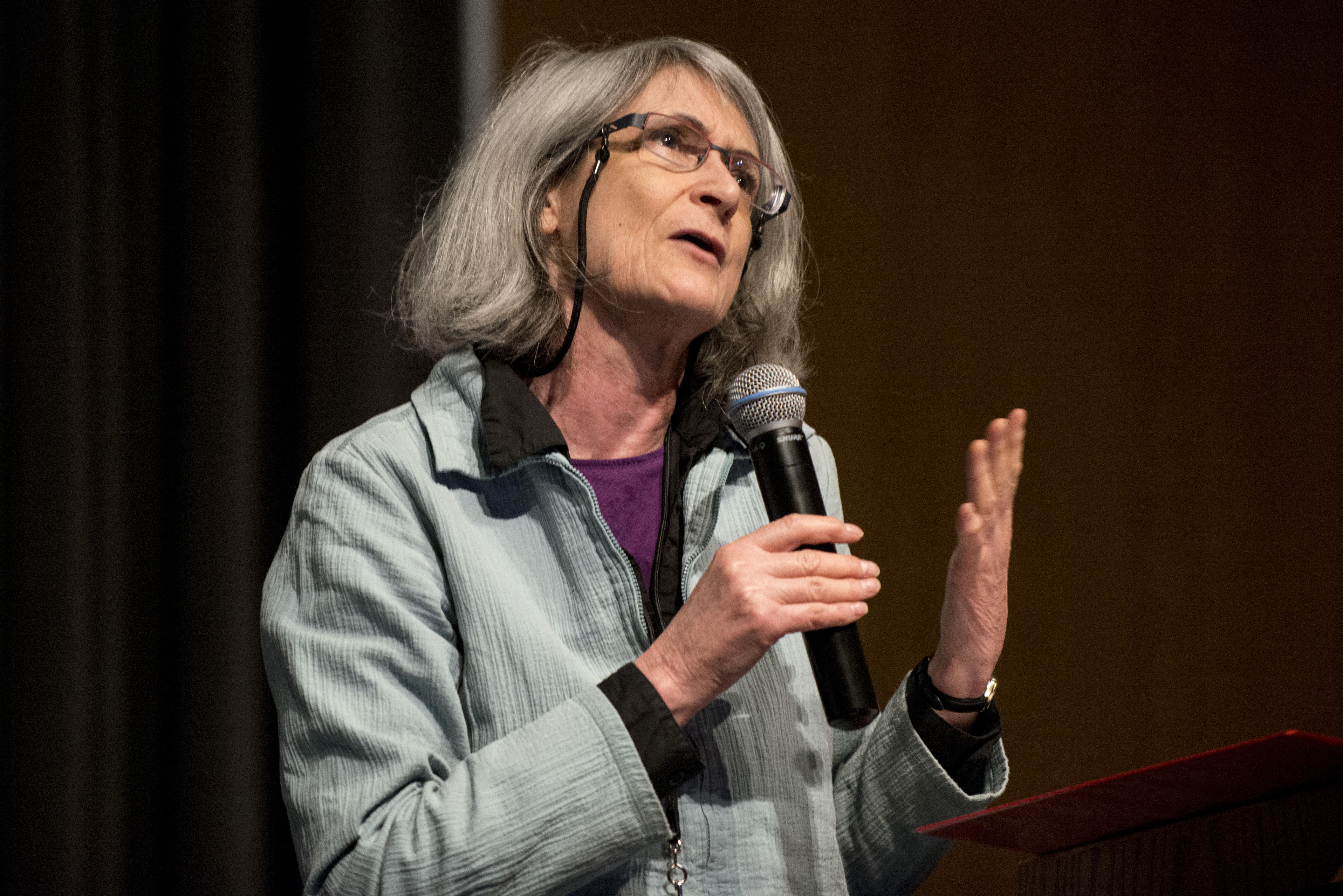 Jane Singer, professor at City University London, speaks at the 2014 ISOJ on the UT-Austin campus. (Lauren Schneider/Knight Center)