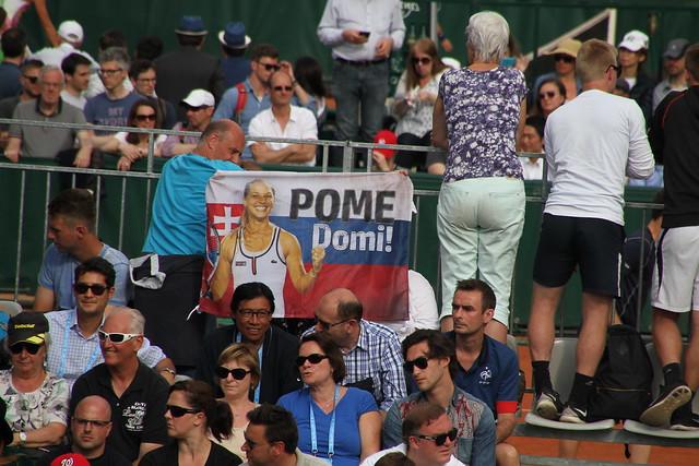 Cibulkova's fans
