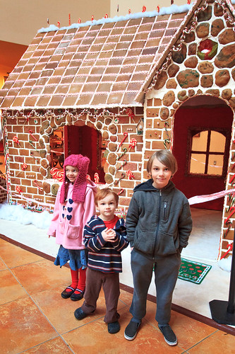 Gingerbread House Tour | by Fluttering By