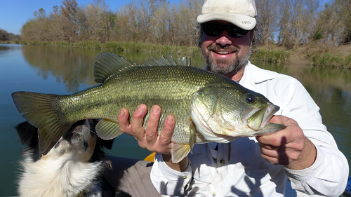 Huge bass on the Colorado river | by PaddyMurphy